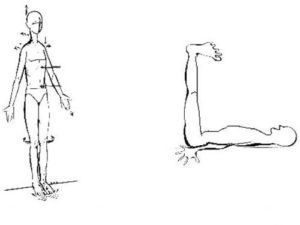 postura mezieres