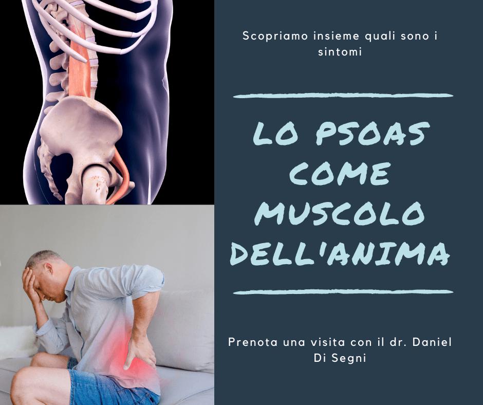 ileopsoas muscolo anima
